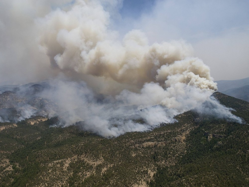 A massive wildfire in the US state of New Mexico - ignited by lightning 