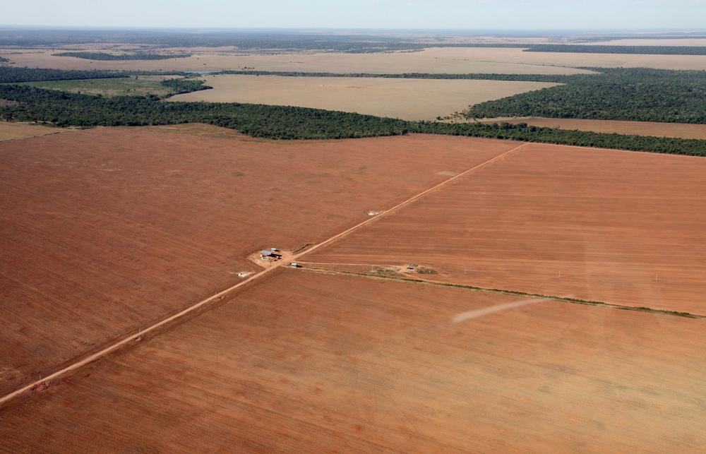 <p>Agriculture in Brazil is booming, with soy production set to surpass that of the US to become the largest in the world.</p>