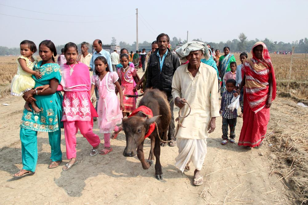 Believing they will please the goddess Gadhimai, many people come barefoot to the festival grounds. Priyag Prasad, 72, along with his family members and a buffalo, have come from a village in the Indian state of Bihar to attend the festival.