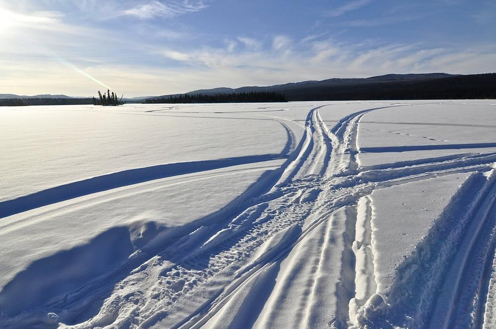 Competitors travel across the Yukon's frozen forests, lakes, and rivers.