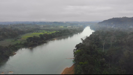 More than 90 percent of Mexico's Lacandon Jungle deforested thumbnail