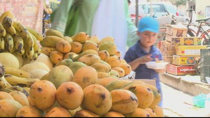 Pakistan mango farmers hit hard by COVID-19, locust attacks thumbnail