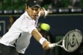 Japanese wildcard Takao Suzuki took Roger Federer to the limit