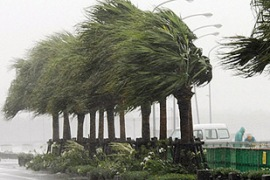 Last month Typhoon Man-yi killed three people and injured more than 70 in Kyushu [Reuters]