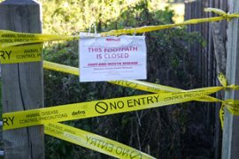 A protection zone has been set up around the infected farm in Surrey [AFP]