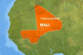 Mali rebels 'shoot at US plane'