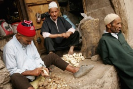 Berber language gets an airing