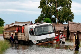 Large parts of central Mozambique remain under water [EPA]
