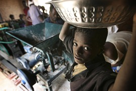 Garalo village in Mali didn't have electricity until a company started generating energy from Jatropha seeds which are taken to the mill to be ground into oil [Christian Aid/Abbie Trayler-Smith]