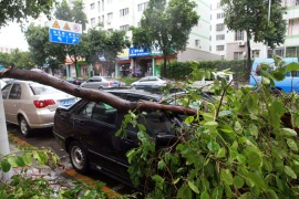 China typhoon death toll rises