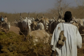 Abyei vote in Sudan 'to be delayed'