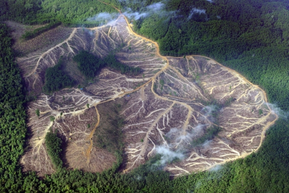 A photo shows mountains deforested by logging in Jambi province on Indonesia's Sumatra island in 2010 [Romeo Gacad/AFP]