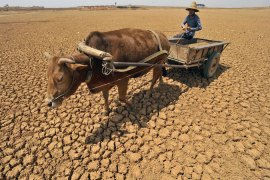 The decline of agriculture?