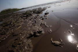 US report spreads blame for Gulf oil spill
