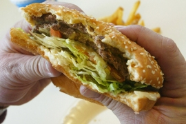 World's first food fat tax imposed in Denmark