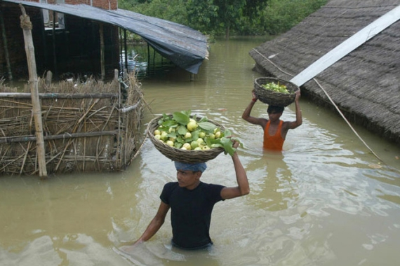 Villagers carry guava fruits as they wade through flood waters in Gorakpur, Uttar Pradesh. [AP] [AP]