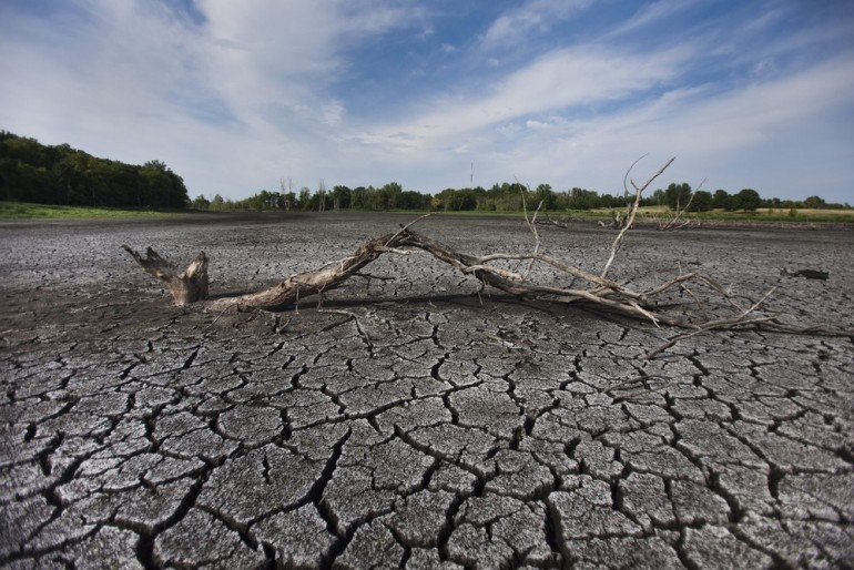 The bottom of Celery Bog is exposed to the sun as water levels in the wetlands plummet in the US state of Indiana. According to the National Oceanic and Atmospheric Administration, the current drought is the most extensive to afflict the US in more than 50 years, and will drive up food prices in the coming year.