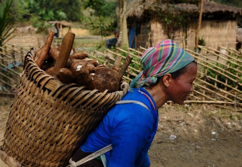 A Nung hilltribe ethnic woman carries home cassava from a field in Vietnam. Studies suggest that women often work harder than men, especially in rural areas, even though 60 per cent of those classified as chronically hungry people are female.