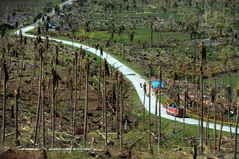 A truck passes among dead coconut trees destroyed by Typhoon Bopha. The typhoon, which hit on December 4, has caused major damage to infrastructure and agriculture in the southern Philippines.