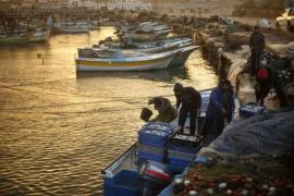 Palestinian fishermen sort boxes containing fish at Gaza Seaport in Gaza City in December 2012 [Reuters]