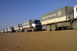 UN and Sudanese agencies have delivered 600 tonnes of supplies for those displaced by the fighting [WFP Sudan]