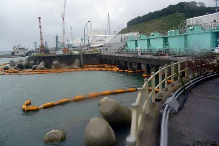 A big earthquake and tsunami in March 2011 damaged the power station north of Tokyo [AFP]