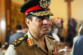 Egypt army chief seeks immunity for military