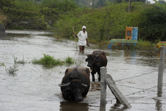 India's eastern coastal states have faced flooding over several weeks from torrential rains [File: Getty Images]