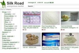 The original Silk Road was shut down in October and its owner, Ross William Ulbricht, arrested [AP]