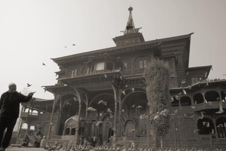 Pigeons at Shah Hamadan, one of the oldest Islamic shrines of the valley