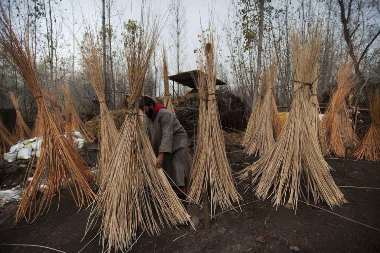 Bundle of wicker sticks kept in the open for drying. Manufacturing the kangri involves labour and local artisanal craftsmanship.