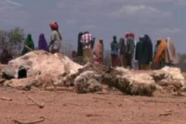 Tens of thousands of people are facing famine in southern Somalia [Al Jazeera]
