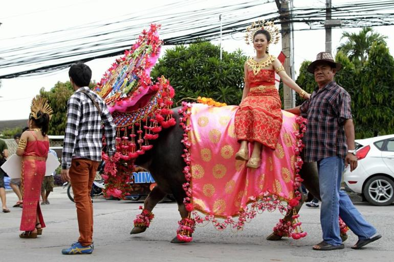 A Thai woman rides a decorated buffalo during the parade. The weeklong festival offers a wide range of activities - but the main attraction is the buffalo race.