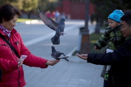 The symbols of peace were released at sunrise in Beijing's symbolic heart of Tiananmen Square [AP]