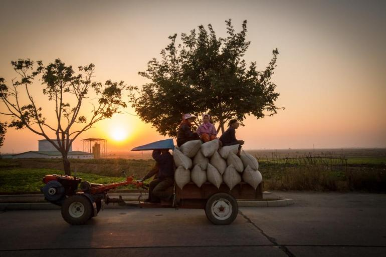 North Korean farmers transporting grain on a small tractor.
