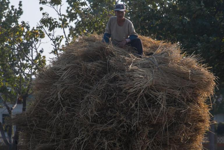 A farmer relaxes on top of a straw pile.