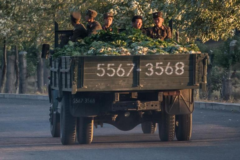 North Korean soldiers travel on the back of a lorry carrying cabbages.
