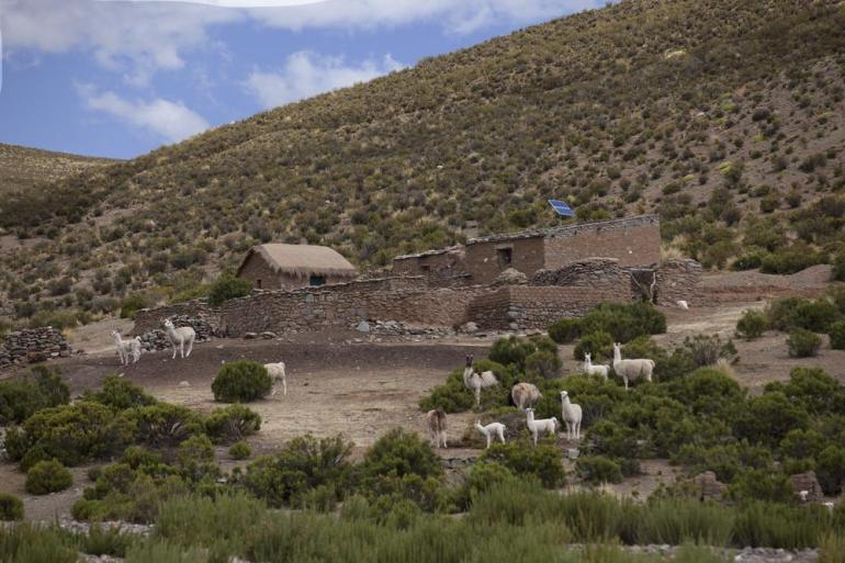 In northern Argentina, communities have traditionally survived with only one source of fuel: wood.