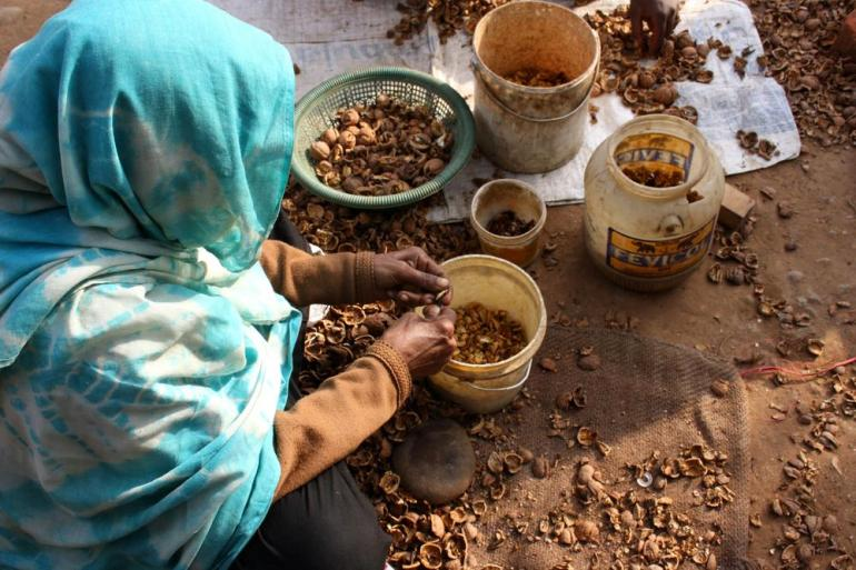 Shamshad, 69, earns a living by extracting nuts from walnut shells for a local trader.