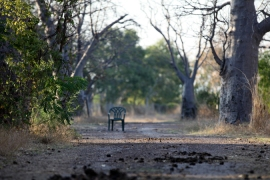 Remote government-funded communities are facing closures [Marieke Ceranna/Amnesty International Australia]
