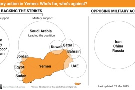Military action in Yemen: Who's for it, who's against?
