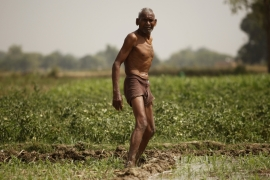 Indian farmer irrigates his field on the outskirts of Allahabad, India [AP]