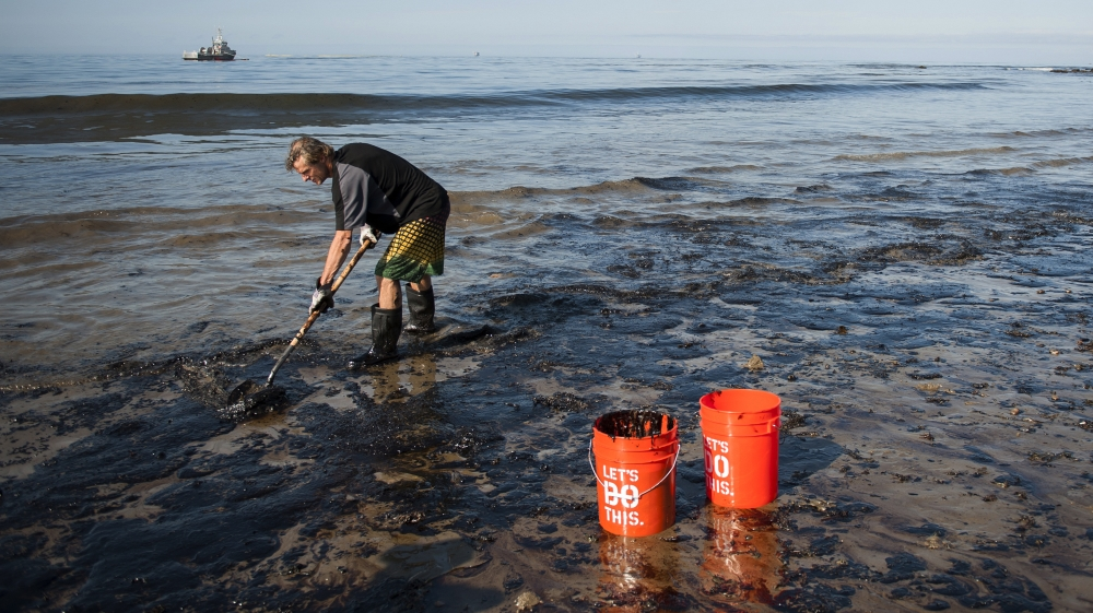 , Major oil spill washes ashore in California, killing wildlife, The World Live Breaking News Coverage & Updates IN ENGLISH