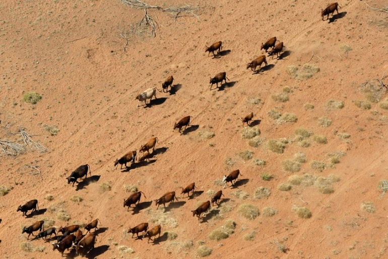 Scorching droughts have afflicted Western Australia throughout history [Tim Wimborne/Reuters]