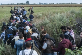 Record number of refugees enter Hungary from Serbia