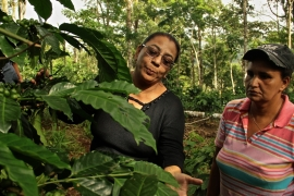 Gaining Ground: Nicaragua's Women Coffee Farmers