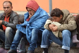 Germany: Refugees are falsely claiming to be Syrian