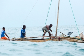 Fishermen dependent on sharks have seen their catch diminish [Garth Cripps/Al Jazeera]