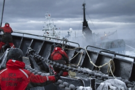 Sea Shepherd activists aboard vessels have engaged in ocean clashes with Japanese whaling ships [Reuters]