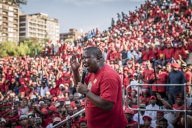 Julius Malema: Ready to remove Zuma government by force